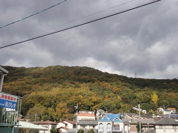 kouyounoyama1.jpg
