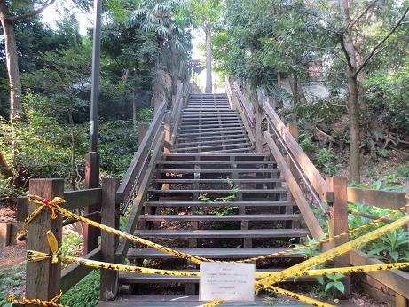 井の頭公園、階段壊れる