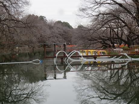 井の頭池、かいぼり工事