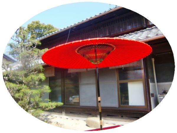 つまおり傘-1