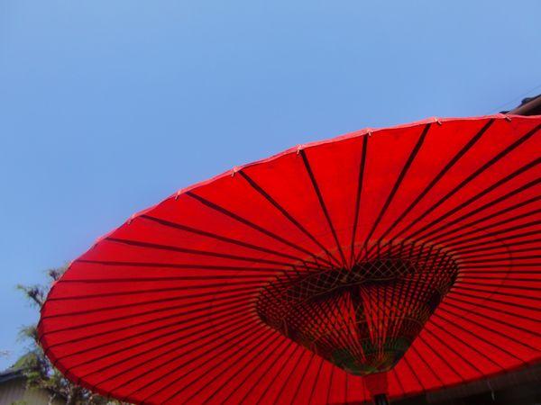 つまおり傘-2