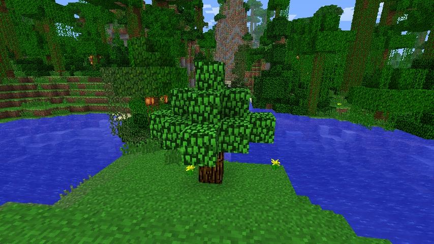 OliveCraft-11.jpg