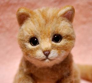 茶トラ子猫131210 009