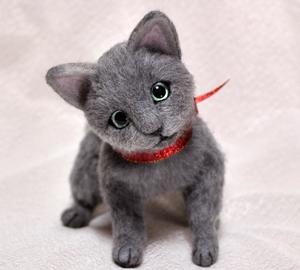 ロシアンブルー猫131225 057
