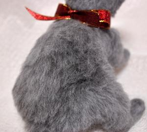 ロシアンブルー猫131225 058