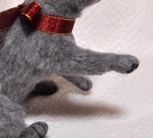 ロシアンブルー猫131225 048