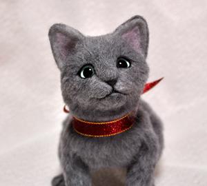 ロシアンブルー猫131225 054
