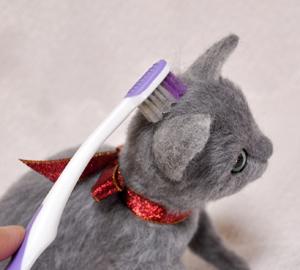 ロシアンブルー猫131225 061