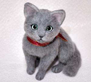 ロシアンブルー猫131225 004