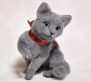 ロシアンブルー猫131225 013