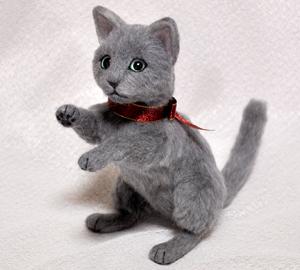 ロシアンブルー猫131225 019