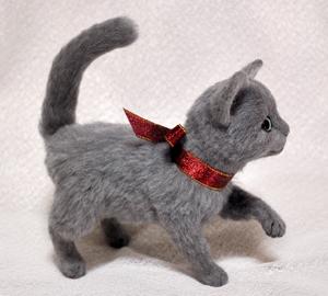 ロシアンブルー猫131225 027