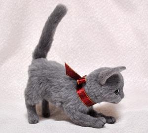 ロシアンブルー猫131225 033