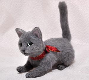 ロシアンブルー猫131225 035