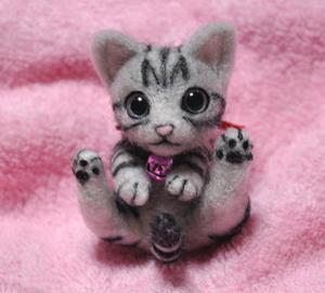 アメショミニ猫140103 002