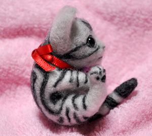 アメショミニ猫140103 004