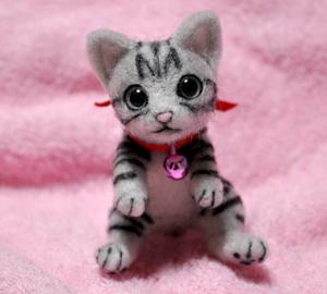 アメショミニ猫140103 006