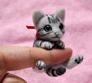 アメショミニ猫140103 011