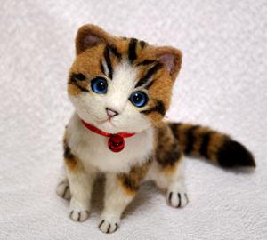 白キジトラはちわれ子猫140108 001