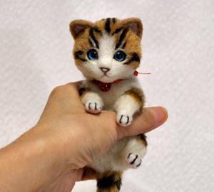 白キジトラはちわれ子猫140108 041