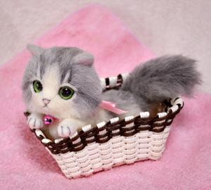 グレーハチワレ子猫140114 006