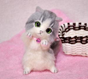 グレーハチワレ子猫140114 014