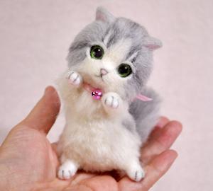 グレーハチワレ子猫140114 020
