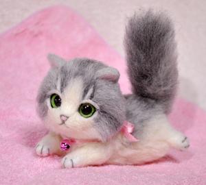 グレーハチワレ子猫140114 021