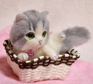 グレーハチワレ子猫140114ー 006