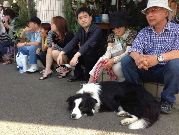 fukushimaIMG_2162.jpg