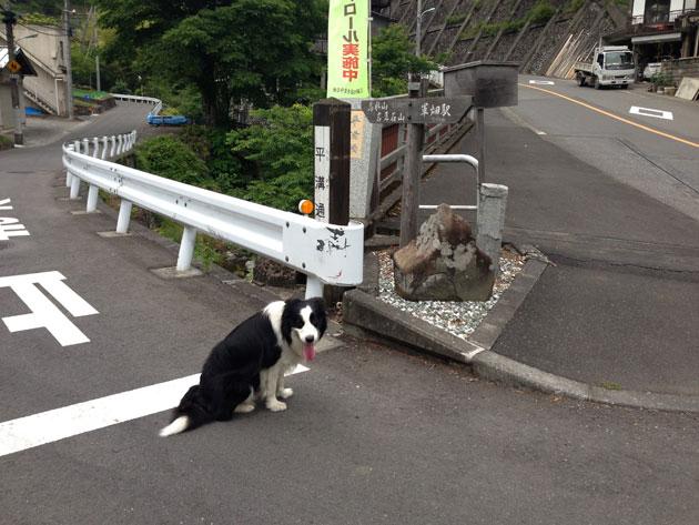 takami3336.jpg