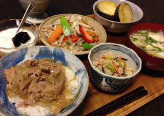 Nov12_豚丼