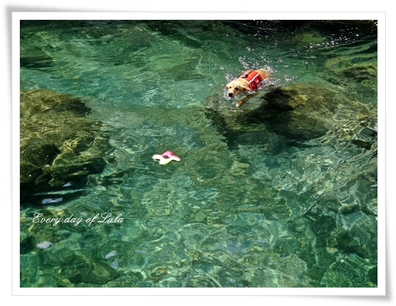 泳ぐじょ201308