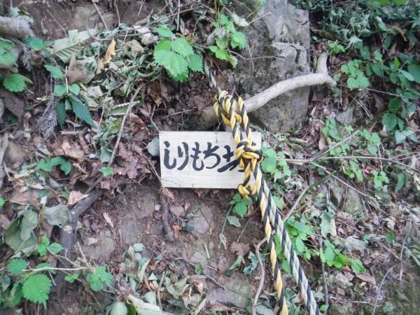 伊豆ヶ岳、子ノ権現 060