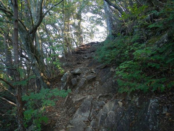 鋸山から日の出山 026