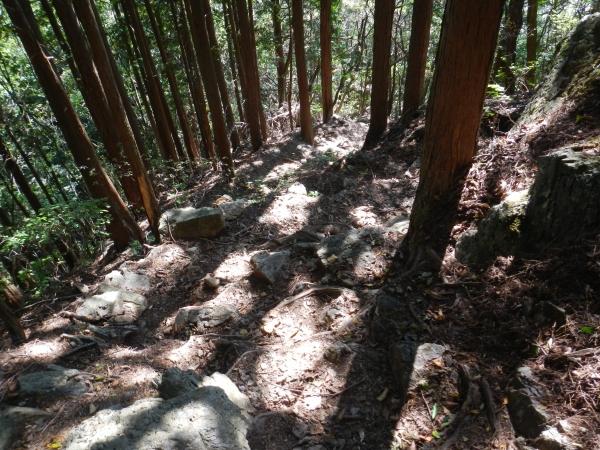 鋸山から日の出山 062