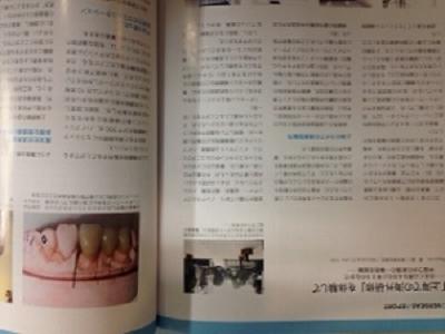 写真 2 (2)