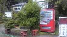 SBSH03171.JPG