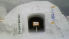 ルイージのだんぼーる★はうす-SBSH0681.JPG