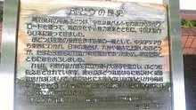 ルイージのだんぼーる★はうす-SBSH03451.JPG