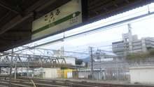 ルイージのだんぼーる★はうす-SBSH03511.JPG
