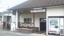 ルイージのだんぼーる★はうす-SBSH03561.JPG