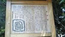 ルイージのだんぼーる★はうす-SBSH03711.JPG