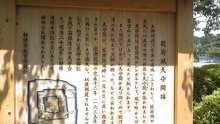 ルイージのだんぼーる★はうす-SBSH03751.JPG