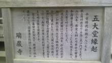 ルイージのだんぼーる★はうす-SBSH01331.JPG