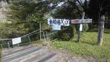 ルイージのだんぼーる★はうす-SBSH01601.JPG