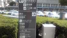 ルイージのだんぼーる★はうす-SBSH01671.JPG