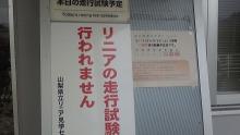 ルイージのだんぼーる★はうす-SBSH02111.JPG