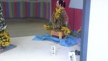 ルイージのだんぼーる★はうす-SBSH0299.JPG
