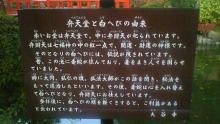 ルイージのだんぼーる★はうす-SBSH04021.JPG